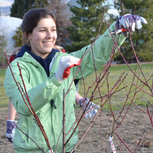 Biology Degree Program SOU Sustainability